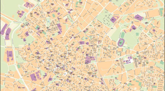 Mapa vectorial illustrator eps Jerez calles