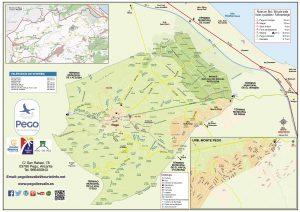 Mapa Pego 2019 municipio