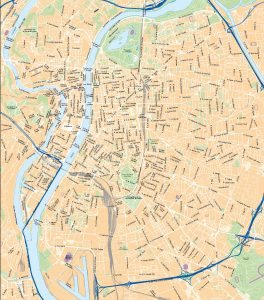 Lyon mapa vectorial illustrator eps